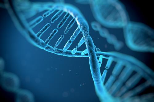 DNA/ilustrační foto