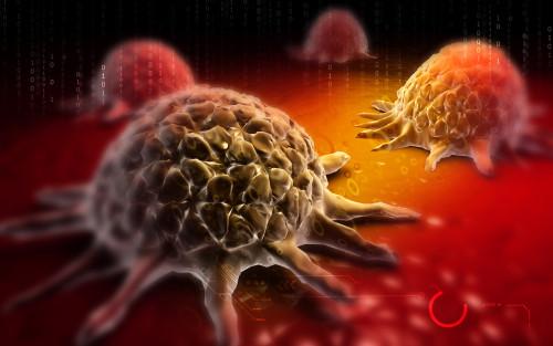 Rakovina a imunita/ilustrační foto
