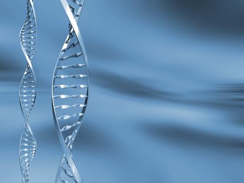 DNA abstract/ilustrační obrázek