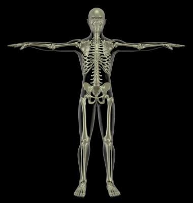 Tělo/ilustrační foto