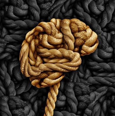 Mozek/ilustrační obrázek